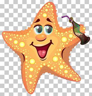 Patrick Star Cartoon Starfish Drawing PNG
