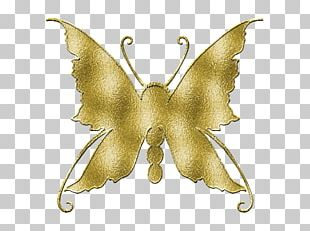 Butterfly IPhone Desktop Photography PNG