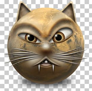 Feral Cat Whiskers Kitten Computer Icons PNG