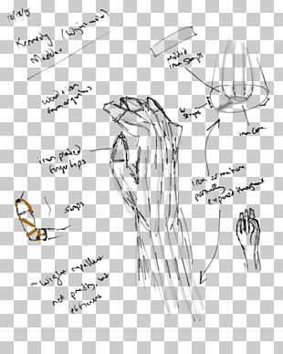 Finger Homo Sapiens Line Art Sketch PNG
