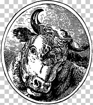 Cattle Horse Drawing Mammal /m/02csf PNG