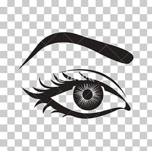 Computer Icons Human Eye Eyebrow PNG