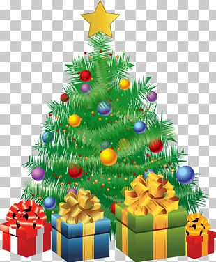 Christmas Tree Christmas Day Christmas Eve PNG