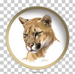 Cougar Tiger Cat Felidae Painting PNG