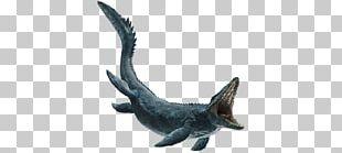 Microceratus Mosasaurs Carnotaurus Pteranodon Tyrannosaurus PNG