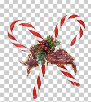 Candy Cane Christmas Santa Claus Gift PNG