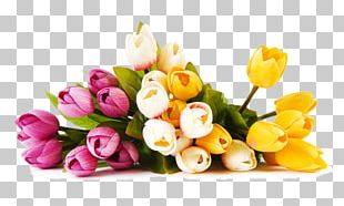 Garden City Florist Flower Bouquet Floristry Birthday PNG