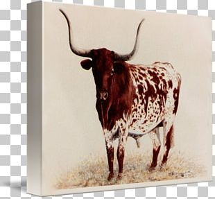 Texas Longhorn Oil Painting Art Canvas PNG