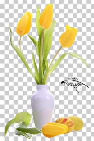 Tulip Flower Bouquet Yellow Desktop PNG