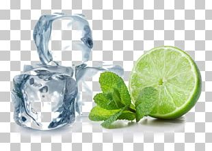 Cocktail Water Mint Lemon Ice Cube Lime PNG