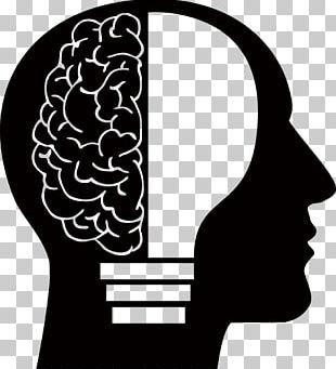 Human Brain Homo Sapiens Human Head PNG