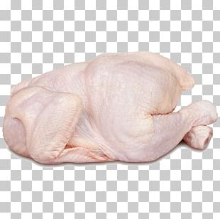 Chicken Meat Buffalo Wing Broiler PNG