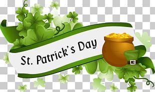 St. Patricks Cathedral Saint Patricks Day What Is St. Patricks Day? March 17 Parade PNG