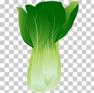 Vase Leaf Plant Stem PNG