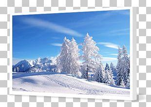 Desktop Display Resolution Winter High-definition Television PNG