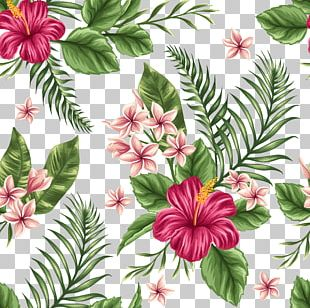 Flower Tropics Watercolor Painting PNG