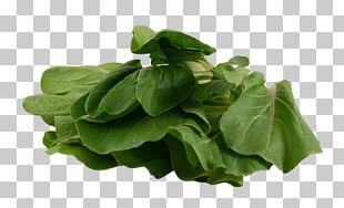 Spinach Vegetarian Cuisine Leaf Vegetable Chard PNG