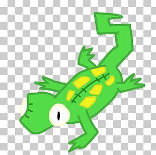 Tree Frog Reptile Gecko National Geographic Animal Jam Lizard PNG