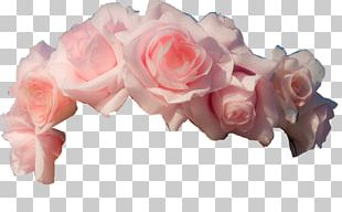 Wreath Flower Crown Garland PNG