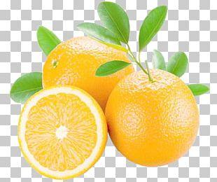 Orange Juice Mandarin Orange Grapefruit Bitter Orange PNG