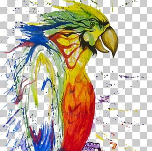 Watercolor Painting Macaw Parrot Paper PNG