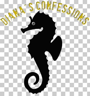 Silhouette Seahorse Drawing PNG