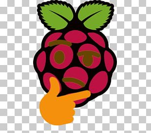 Raspberry Pi Foundation Arduino Raspbian Camera Module PNG