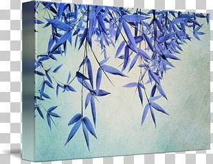 Gallery Wrap Canvas Graphic Arts Painting PNG