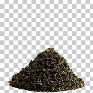 Nilgiri Tea Assam Tea Darjeeling Tea PNG