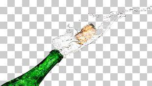 Champagne Wine Soft Drink Bottle PNG
