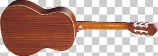 Steel-string Acoustic Guitar Musical Instruments Classical Guitar PNG