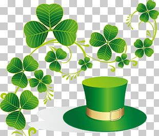 Ireland Saint Patrick's Day March 17 Irish People PNG