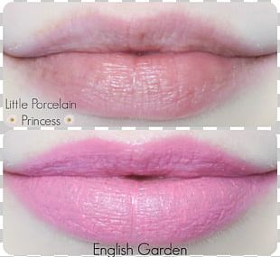 Lipstick Lip Gloss Etude House Tints And Shades PNG