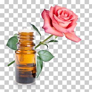 Rose Oil Rose Water Essential Oil Herbal Distillate PNG