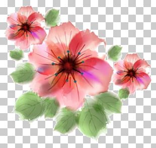 Watercolour Flowers Watercolor Painting PNG