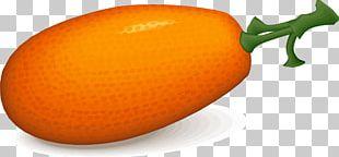 Juice Tangelo Orange Persimmon PNG
