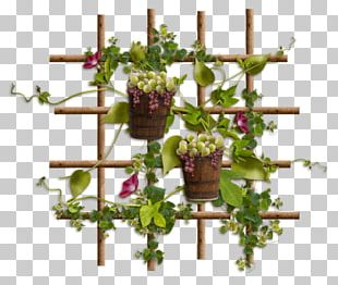 Centerblog Grape Floral Design PNG