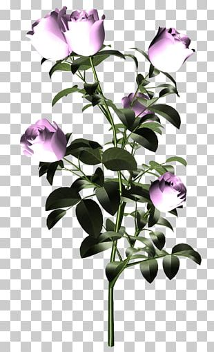 Cut Flowers Purple Plant Stem PNG