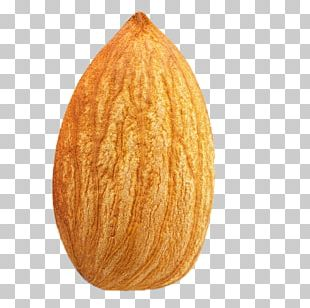 Almond Nut Fruit PNG