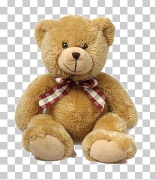 Teddy Bear Stuffed Animals & Cuddly Toys Gift PNG