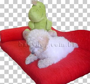 Toy Poodle Maltese Dog Miniature Pinscher Medium Poodle PNG