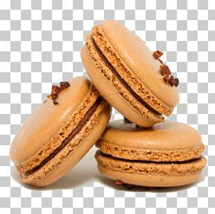 Macaroon Macaron Praline Dessert Chocolate PNG