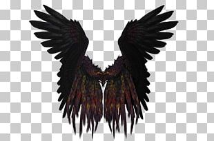 Short Black And Purple Wings PNG