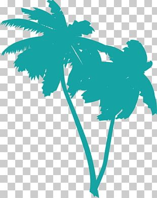Arecaceae Free Content PNG