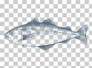 Pollack Fish Products Cod Pollock PNG