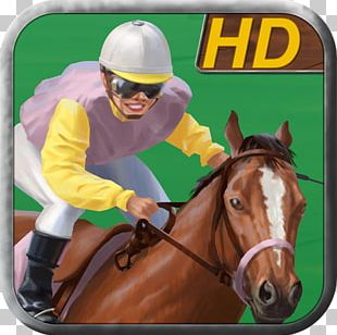 Horse Racing Mane Stallion Halter PNG