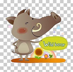 Wild Boar Illustration PNG