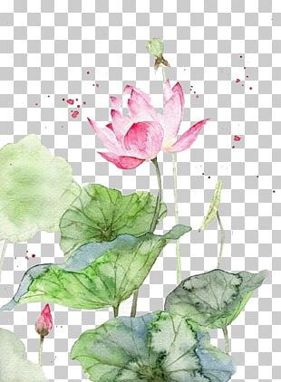 Watercolor Painting Watercolour Flowers Art Chinese Painting PNG