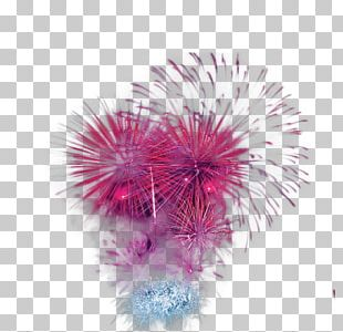Adobe Fireworks Festival PNG
