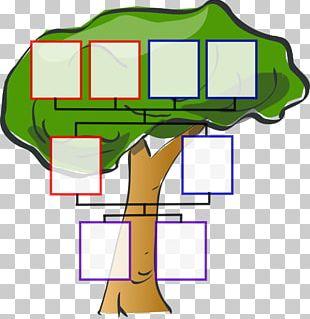 Family Tree Child Genealogy PNG